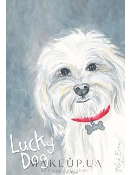 Willowbrook company lucky dog