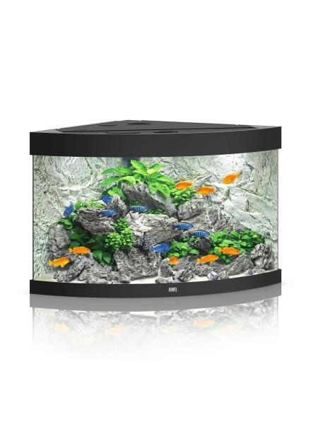Аквариумный набор Juwel «Trigon 190 LED» чёрный, угловой (190 л)