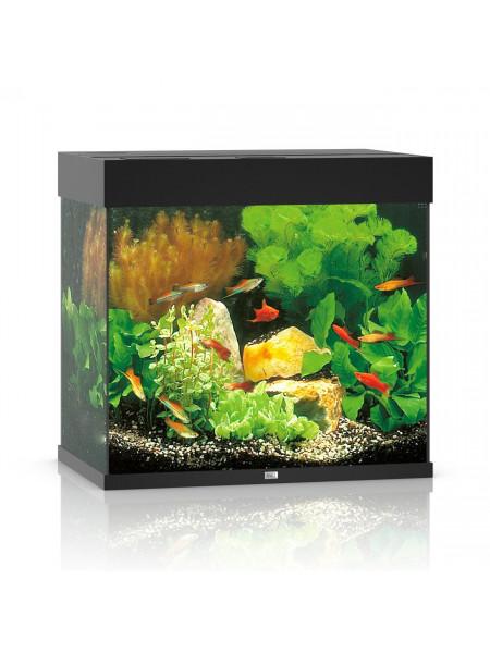 Аквариумный набор Juwel «Lido 120 LED» чёрный, прямой (120 л)