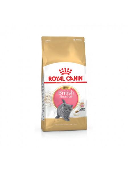 Сухой корм для котят породы британская короткошерстная Royal Canin Kitten British Shorthair 400 г (домашняя птица)