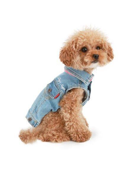 Джинсовый жилет для собак Puppy Angel «Ohkio» S (синий)