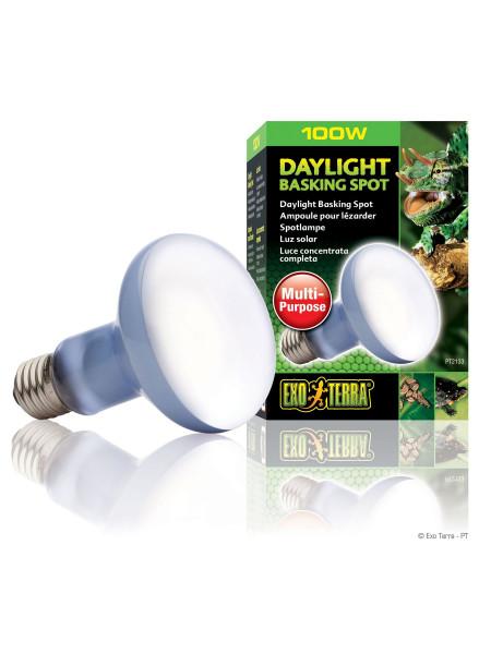 Лампа накаливания с неодимовой колбой Exo Terra «Daylight Basking Spot» 100 W, E27 (для обогрева)