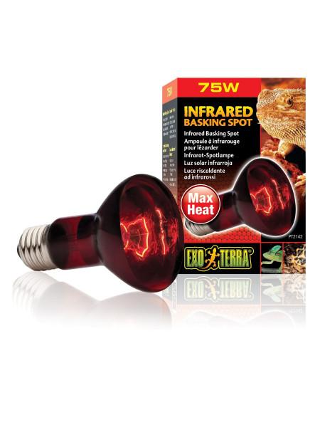 Инфракрасная лампа накаливания Exo Terra «Infrared Basking Spot» 75 W, E27 (для обогрева)