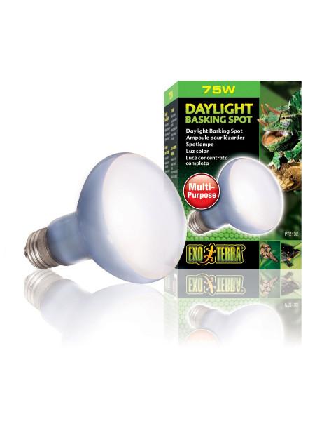 Лампа накаливания с неодимовой колбой Exo Terra «Daylight Basking Spot» 75 W, E27 (для обогрева)