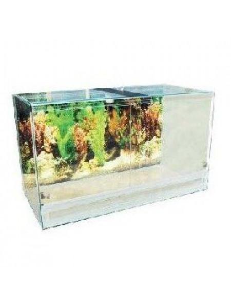 Террариум Природа стеклянный 60 x 35 x 40 см